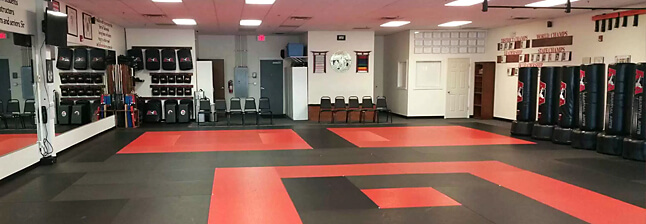 Thrive Martial Arts Windsor